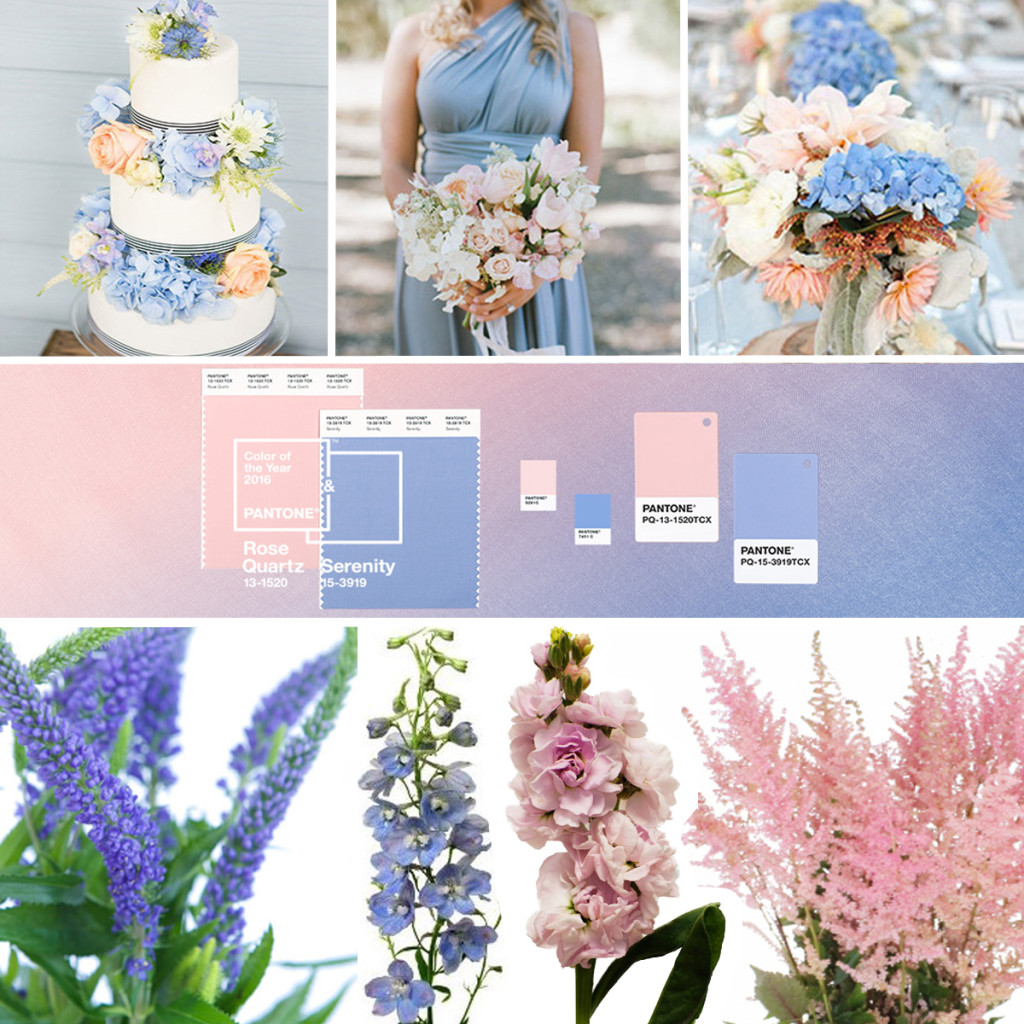Pantone Color of the Year 2016 Floral Inspiration
