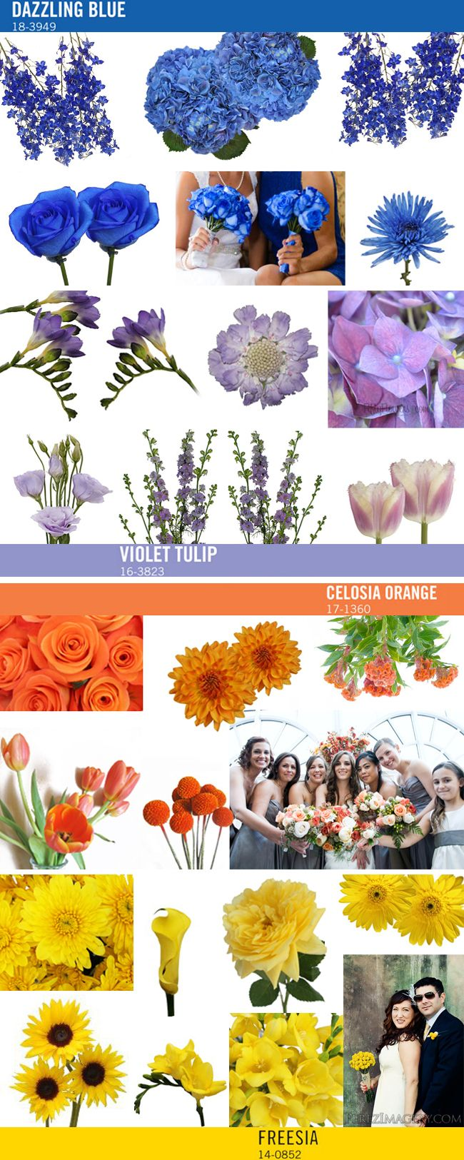 Pantone Color Trends Perfect for Wedding Flowers