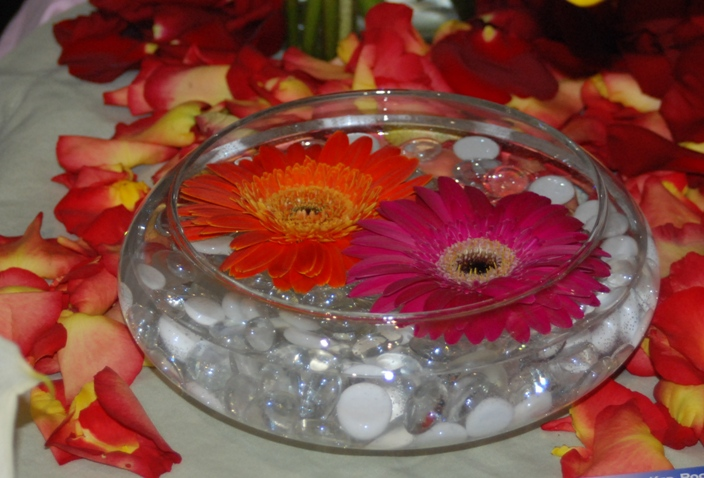 Floating Gerbera Daisies