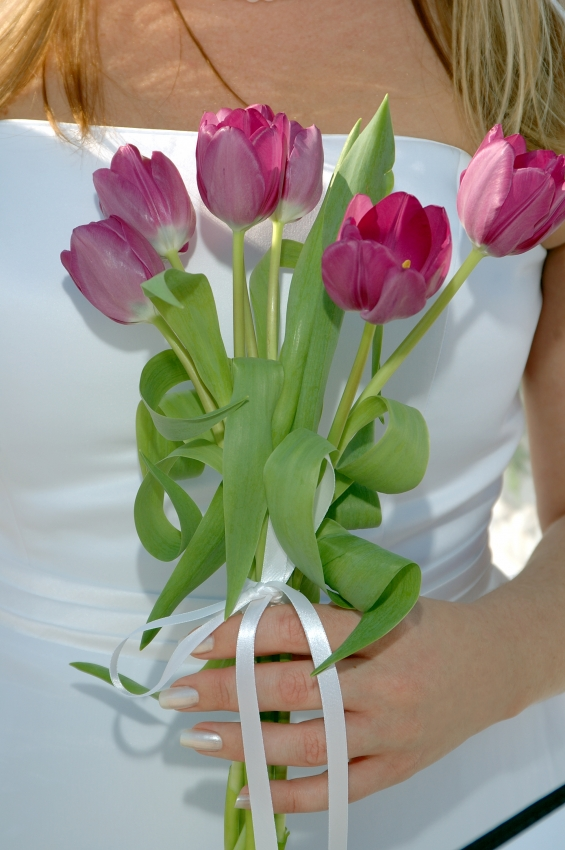 French Tulip bouquet