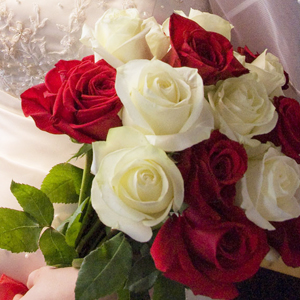 The meanings of rose colors fiftyflowers the blog red and white roses mightylinksfo